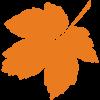 orange leaf icon